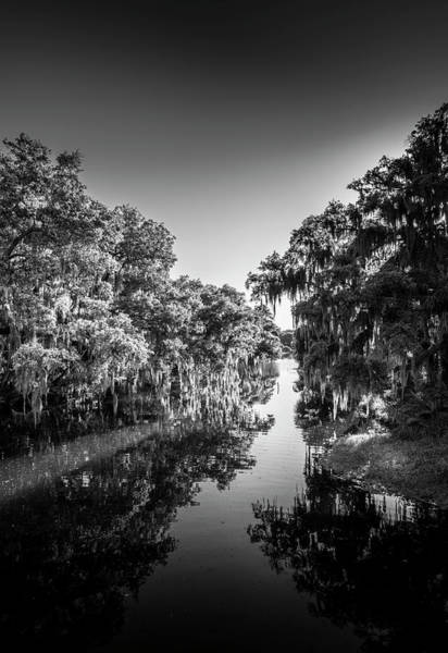 Mossy Photograph - Frog Creek by Marvin Spates