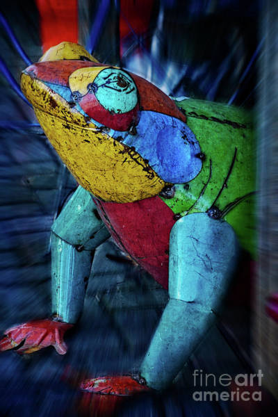 Wall Art - Photograph - Frog Prince by Mary Machare
