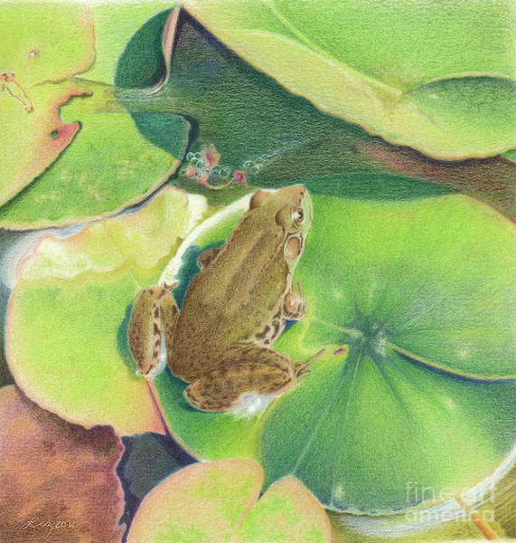 Painting - Froggie by Elizabeth Dobbs