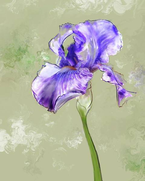 Digital Art - From Charlotte's Garden by Gina Harrison