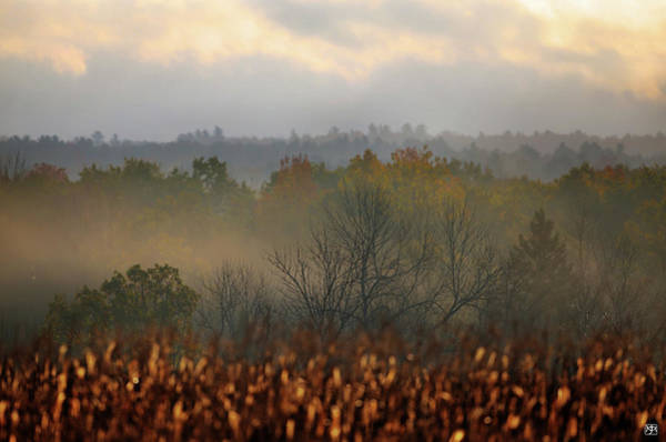 Photograph - From Corn To The Clouds by John Meader