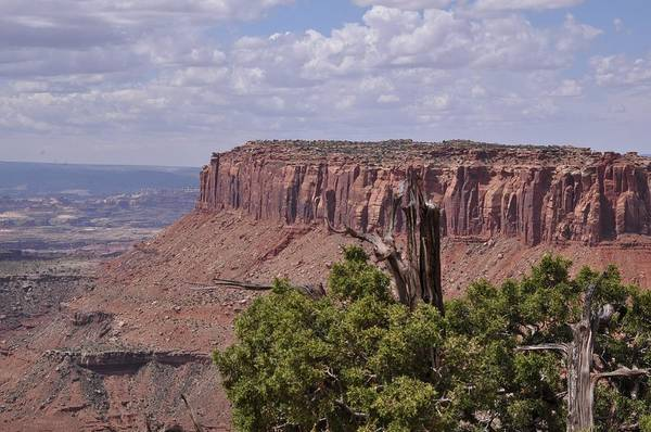 Photograph - From Grand View Point-canyonlands National Park by Frank Madia