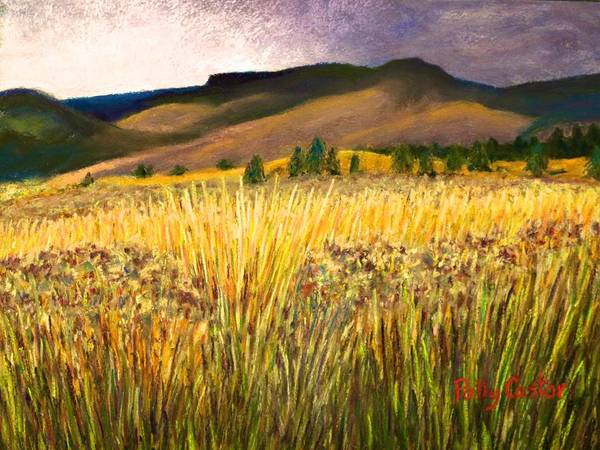 From Storm Into Sunshine Art Print