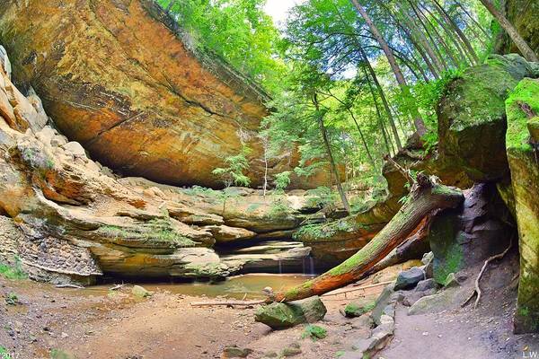 Photograph - From The Bottom Of Old Man's Cave by Lisa Wooten