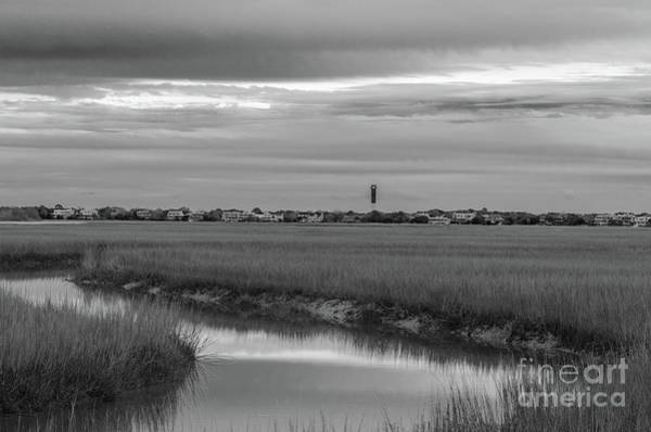 Photograph - From The Marshes by Dale Powell