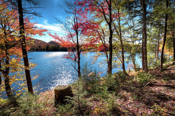 Photograph - From The Shore Of West Lake by David Patterson