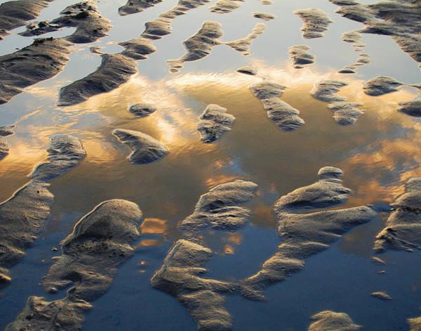 Photograph - Front Beach by Matt Cegelis