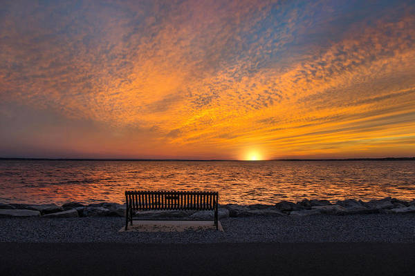 Photograph - Front Row Seat by Robin-Lee Vieira