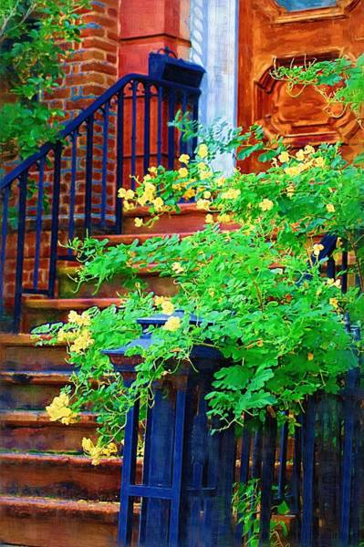 Photograph - Front Stoop by Donna Bentley