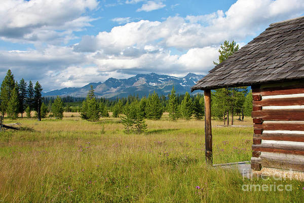 Photograph - Front Yard by Katie LaSalle-Lowery