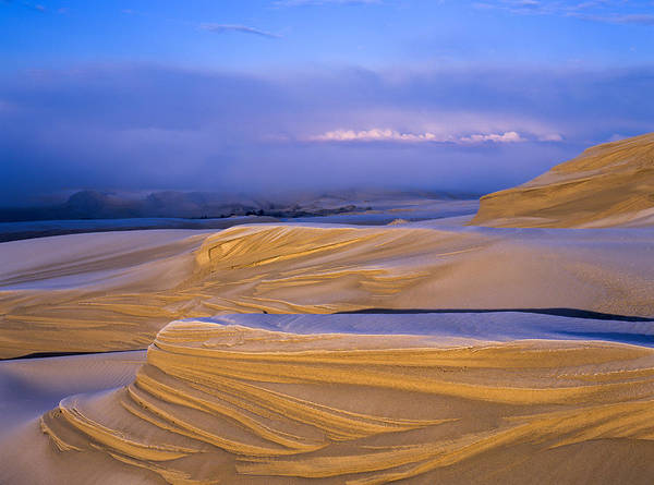 Photograph - Frost And Sand by Robert Potts