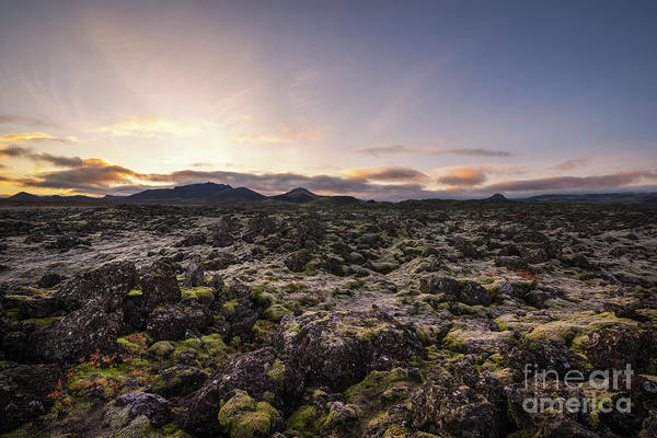 Photograph - Frost Covers The Lava Field  by Michael Ver Sprill