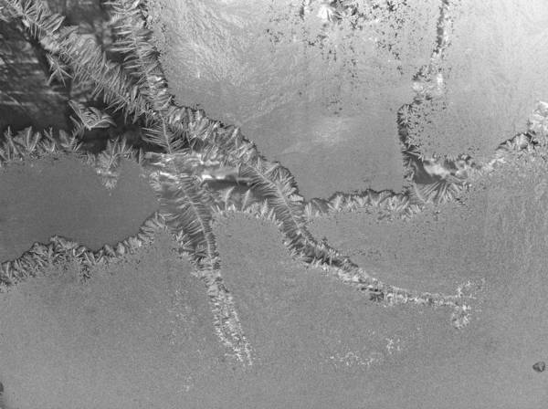 Photograph - Frost Pathways by Polly Castor