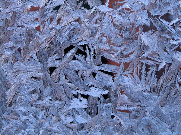Photograph - Frost Patterns On Window 1 by Victor Kovchin