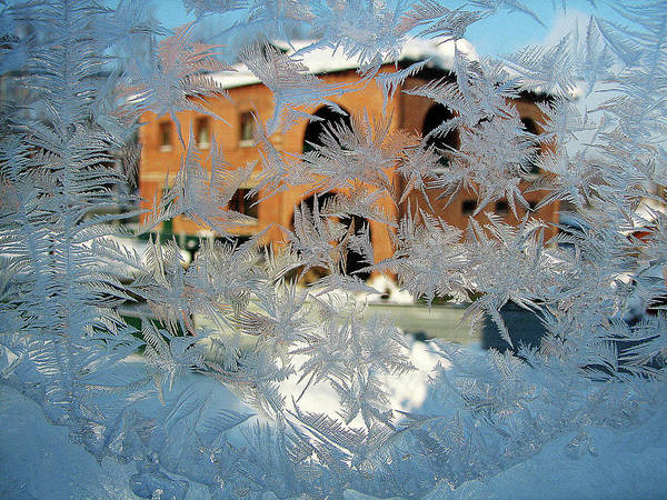 Photograph - Frost Patterns On Window 3 by Victor Kovchin