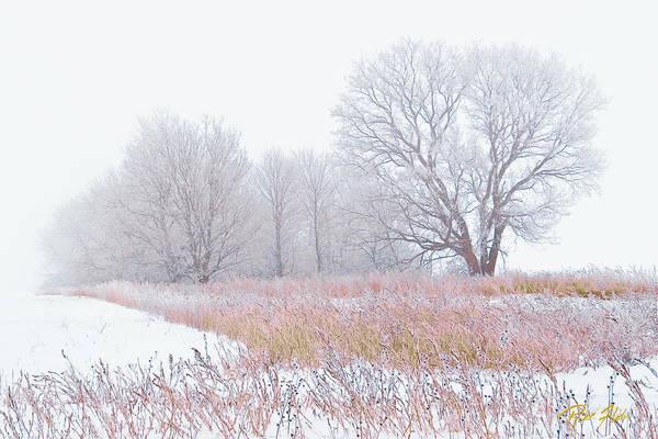 Photograph - Frostbit Fields by Rikk Flohr