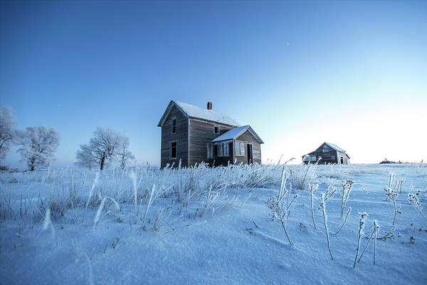 Photograph - Frosted by Aaron J Groen