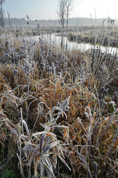 Photograph - Frosted Banks Of Nippersink Creek by Ray Mathis