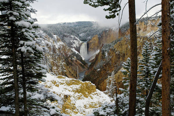 Photograph - Frosted Canyon by Steve Stuller
