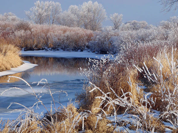 Photograph - Frosted River by James Peterson