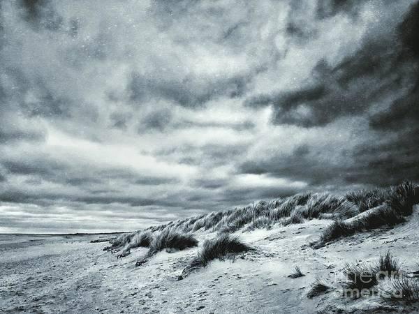 Frost Digital Art - Frosted Shore by John Edwards