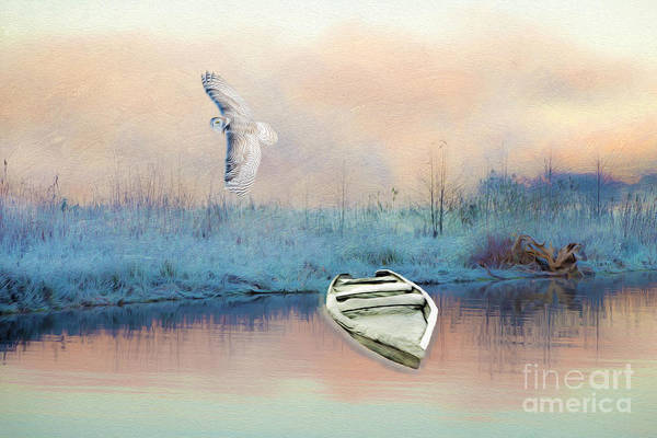 Wall Art - Photograph - Frosted Shore by Laura D Young
