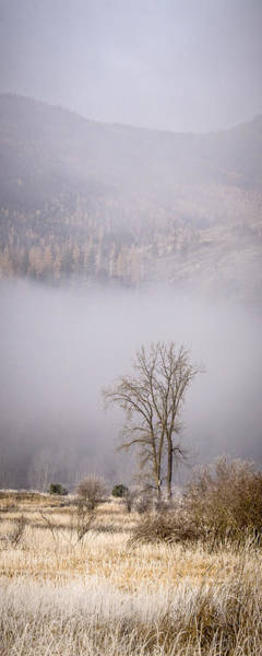 Photograph - Frosty Autumn Morning by Albert Seger