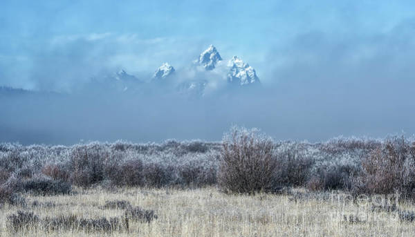 Wall Art - Photograph - Frosty Fall Morning - Grand Teton National Park by Sandra Bronstein
