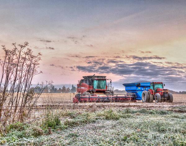 Photograph - Frosty Farm Morning by Rod Best