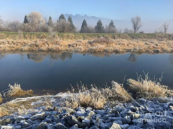 Photograph - Frosty Morning 4 by Victor K