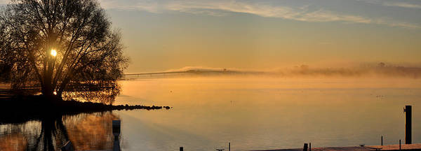 Photograph - Frosty Morning Bayside by Tim Nyberg