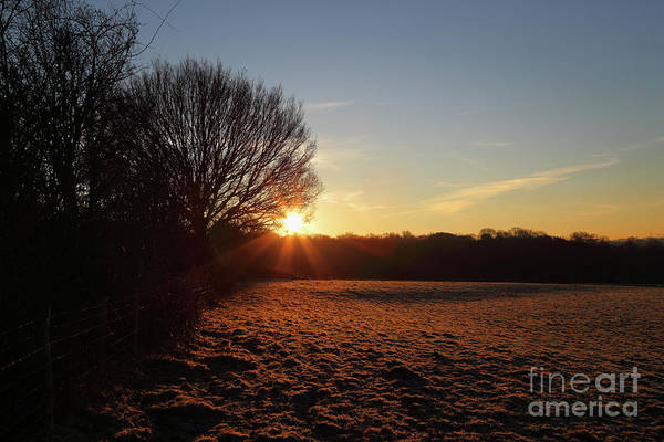 Photograph - Frosty Winter Morning In The Weald Of Kent England by James Brunker