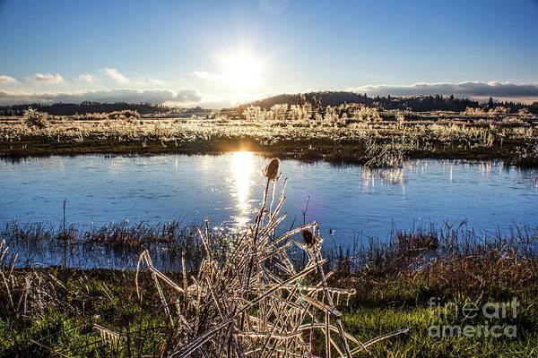Photograph - Frozen 2 by Michael Cross