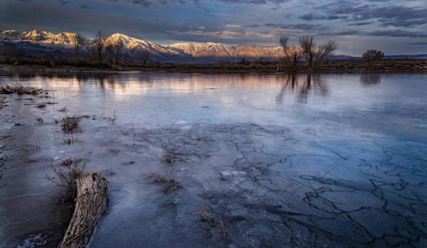 Eastern Sierra Photograph - Frozen by Cat Connor