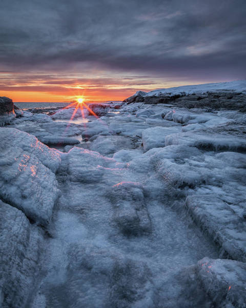 Photograph - Frozen by Colin Chase