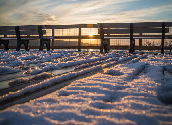 Wall Art - Photograph - Frozen Deck by Kristopher Schoenleber