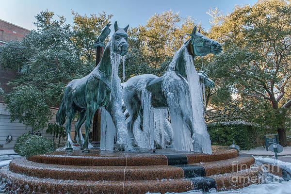 Photograph - Frozen Horse Fountain by Dale Powell