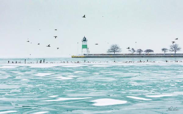 Frozen In Chicago Art Print