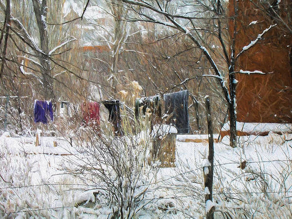 Photograph - Frozen Laundry by Lou Novick