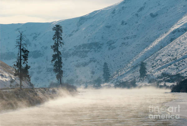 Wall Art - Photograph - Frozen Mist Rising by Mike Dawson