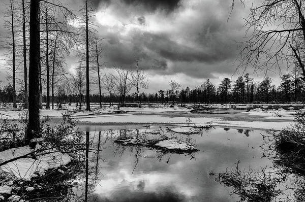 Photograph - Frozen Mullica River by Louis Dallara