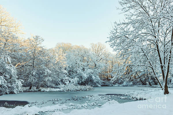 Wall Art - Photograph - Frozen Pond In Winter by Amanda Elwell