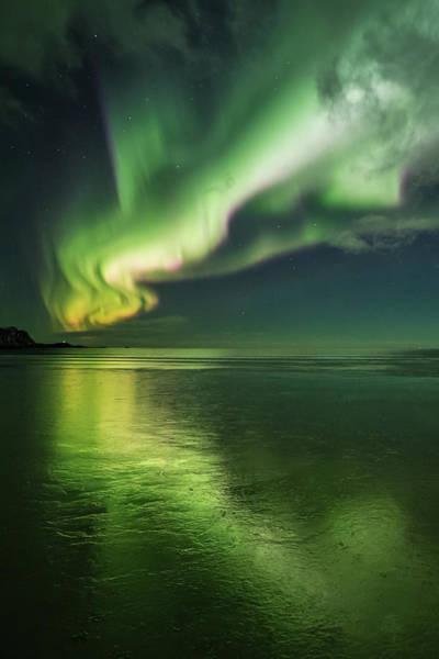 Photograph - Frozen Reflection by Alex Conu