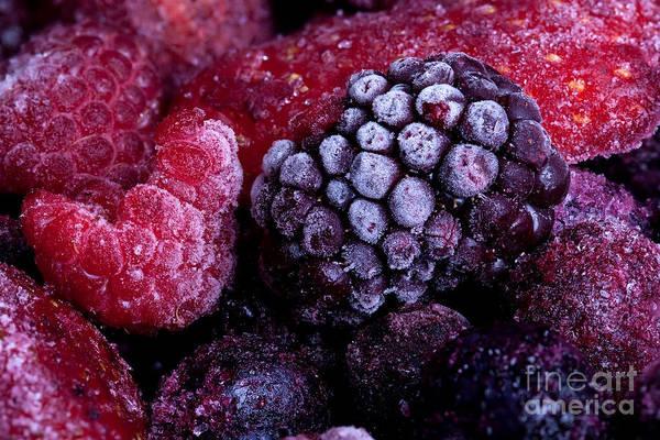 Wall Art - Photograph - Frozen Summer Fruits Macro by Simon Bratt Photography LRPS