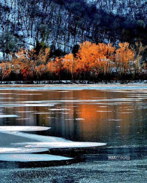 Photograph - Frozen by Susie Loechler