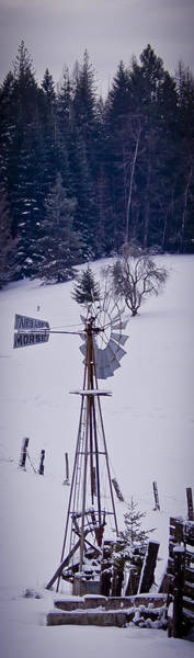 Photograph - Frozen Windmill by Albert Seger