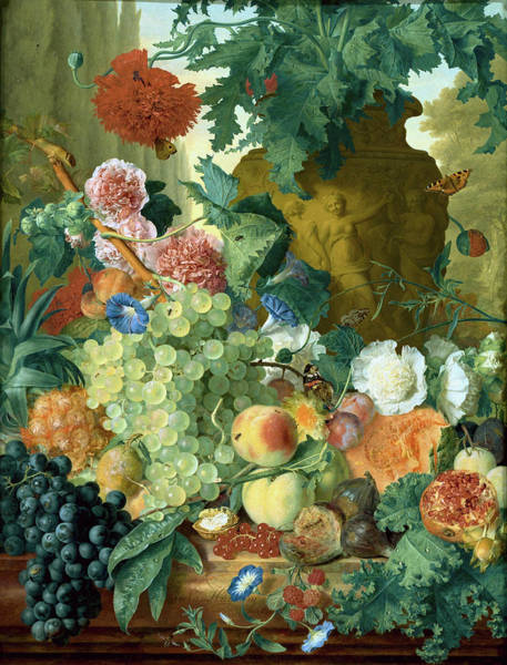Painting - Fruit And Flowers In Front Of A Garden Vase With An Opium Poppy by Jan van Huysum