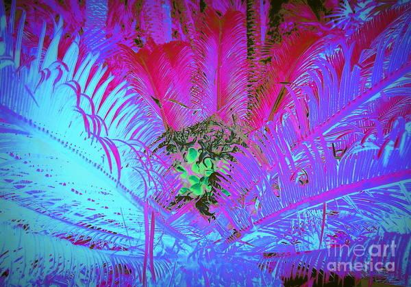 Palm Frond Digital Art - Fruition by Jane Gatward