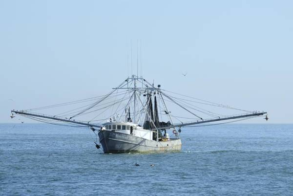 Photograph - Fishing Trawler Constance Diane by Bradford Martin