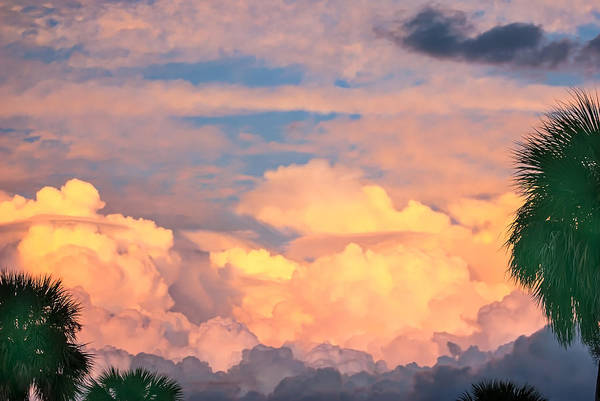 Photograph - Ft De Soto Sunset Clouds by Gene Norris
